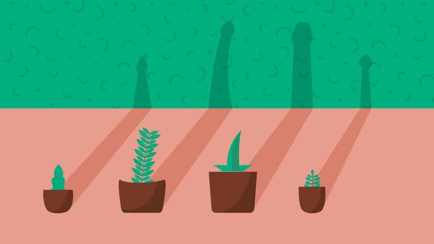 O objetivo é informar os homens sobre qual o tamanho do pênis normal. Quatro vasos de plantas projetam na parede suas sombras em formato de pênis. Umas sombras são mais grossas, outros mais finas; umas são mais compridas, outras mais curtas.