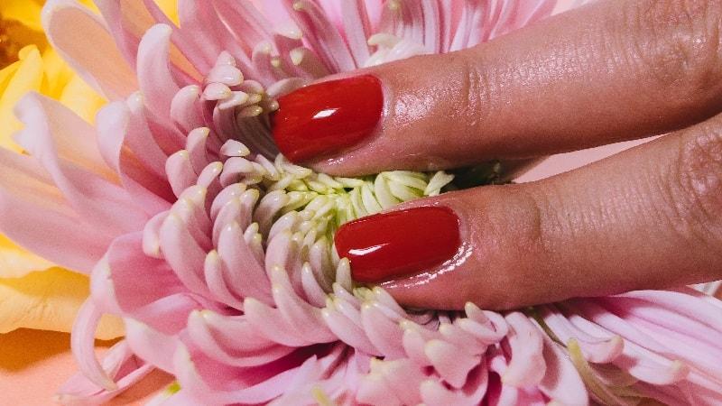 Dois dedos tocam as pétalas de uma flor rosa, simulando uma estimulação no clitóris e o orgasmo sem penetração