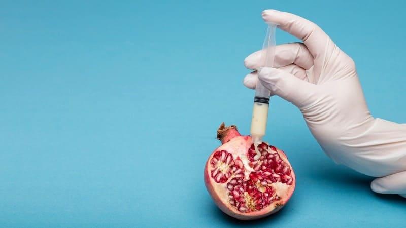 Representação de uma reprodução medicamente assistida, saiba sobre a azoospermia